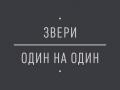 ydoWsk3ap04